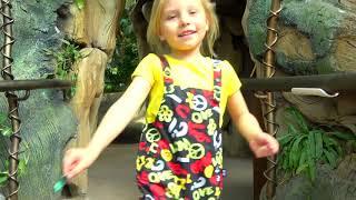 Alicia juega en la Selva con Animales