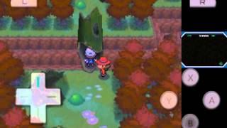 pokemon resolute shale tunnel rare pokemon
