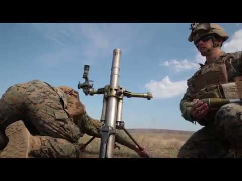 US Marines Platinum Eagle 2019