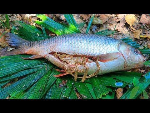 Wow! Gold Necklace In Biggest Fish (20Kg) Stomach And Then Cooking Big Fish In Forest