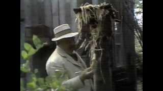 Video Detective Movies English Korean Movie  Detective in 40 minutes Sub INDO ENG 1. Terminator Genisys 2. Jurassic World 2:25 3. Ant-Man 4:51 4. Fantastic download MP3, 3GP, MP4, WEBM, AVI, FLV Januari 2018