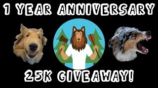 1 Year YouTube Anniversary Celebration, 25k Subs Giveaway, Unboxing!