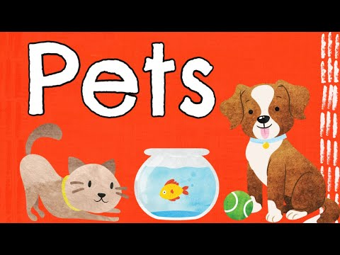 Pets Storytime