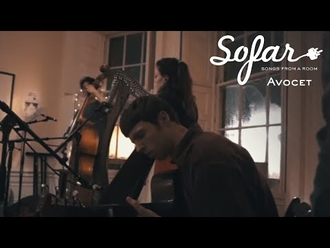 Avocet - Stripes | Sofar Edinburgh