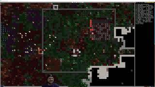 DWARF FORTRESS - Golden Halls - Episode 21