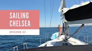 Episode 23 - Sailing Chelsea - Close Call with Cargo Ships!