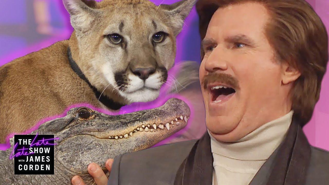 Download Ron Burgundy Meets a Cougar, Alligator & Skunk