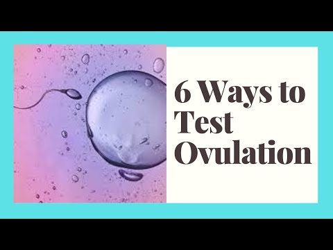 6-ways-to-test-for-ovulation-/-how-to-track-your-fertility-window-/-what-days-can-you-get-pregnant?