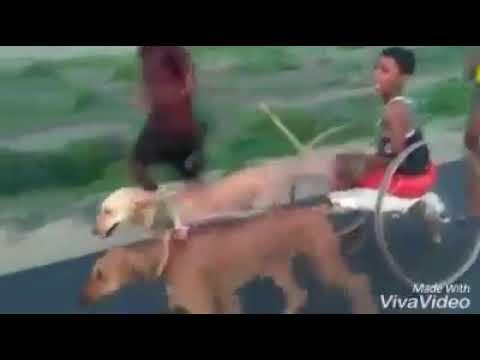 Sahukara Video Song