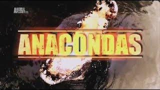 1-1. Большие и страшные. Анаконда (2012)