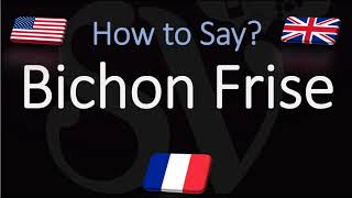 How to Pronounce Bichon Frisé? (CORRECTLY) English, French Dog Breed Pronunciation