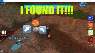 HOW TO GET MOMO FACE | ROBLOX EVENT | TURTLE ISLAND