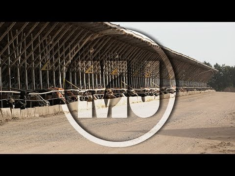 U.S. Meat Exports - Jessica Spreitzer - December 1, 2017