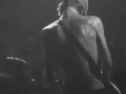 Babyshambles- Fuck Forever 2006 live