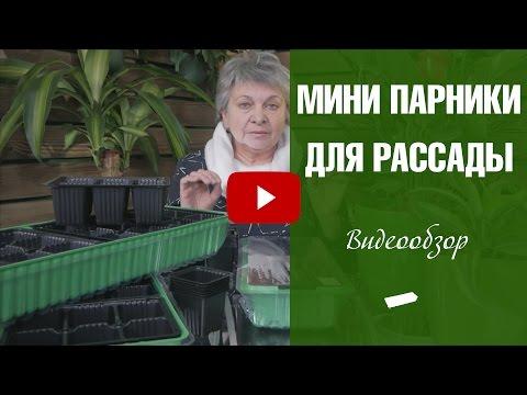 Мини парник для рассады 🌱сажаем семена с hitsadTV
