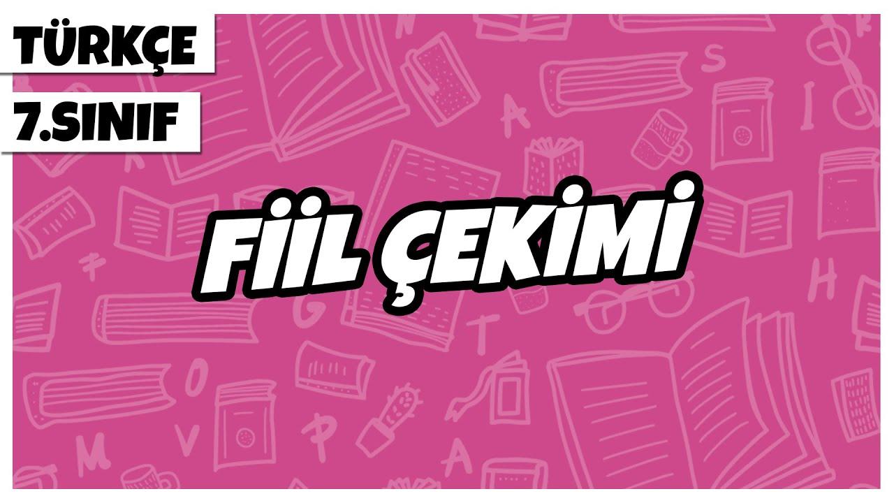 7. Sınıf Türkçe - Fiil Çekimi | 2021