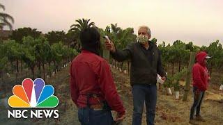California Farmworkers Hit By Coronavirus, Putting Spotlight On Housing Crisis | NBC Nightly News