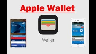 How To Add Credit Cards To Your Apple Pay Wallet Video