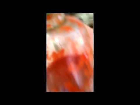 Monster Under Bed - Dragon Sandwich (2006) - 02 - Brutal Lounge Takeover