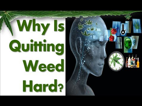 Why Quitting Marijuana Is Difficult For Some People (psychological addiction)