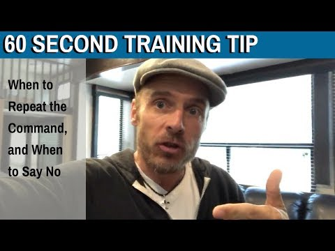 60 Second Training Tip: When to Repeat the Command, and When to Say No