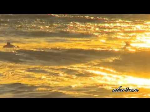Клип Gary Moore - The Prophet