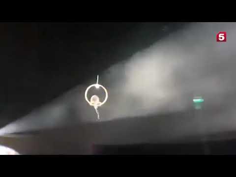 Перепуганный бобер в ярославском цирке помочился на зрителей с высоты.
