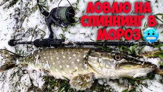 Рыбалка в МОРОЗ Ловля щуки на спиннинг зимой Цвет приманки