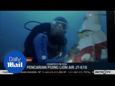 Divers winch out Lion Air wreckage from the depths of Java sea