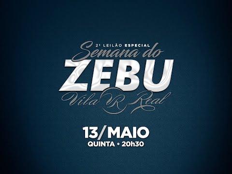 Lote 29   Selehnah FIV VRI Vila Real   VRI 2938 Copy