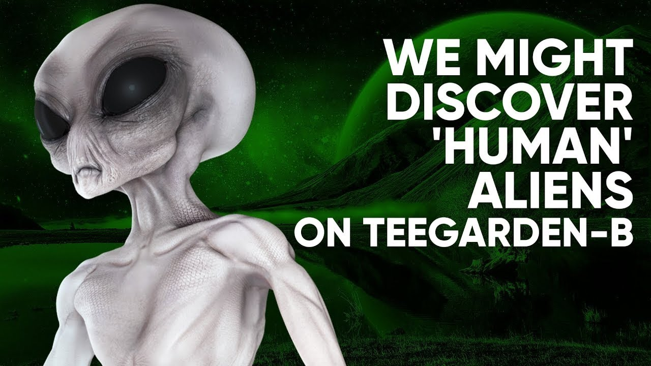 We Might Discover 'Human' Aliens on Teegarden-b