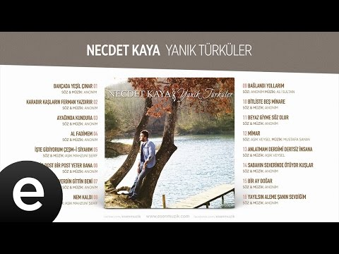 Anlatmam Derdimi Dertsiz İnsana (Necdet Kaya) Official Audio #anlatmamderdimi #necdetkaya