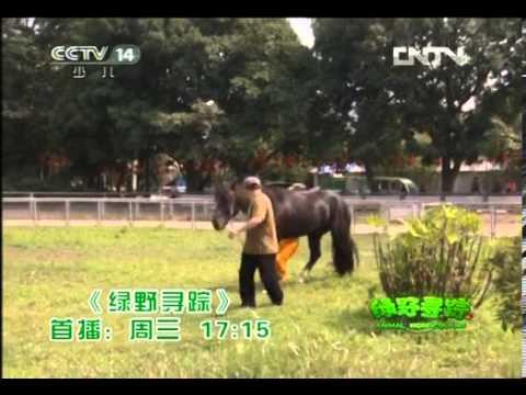 绿野寻踪 绿野寻踪 20120627