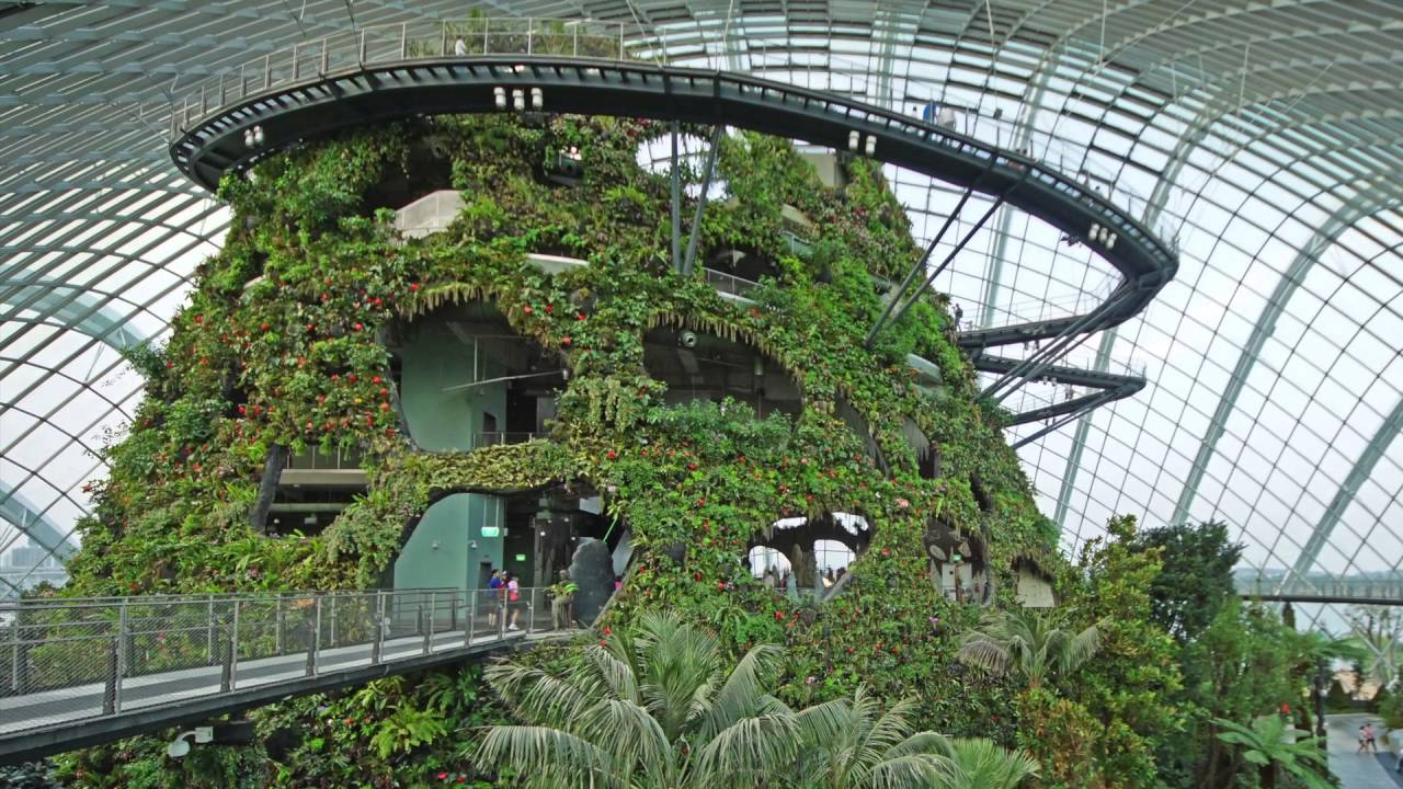 Gardens By The Bay, Cloud Forest Conservatoryu0027s Cloud Mountain   Project Of  The Week 5/2/16   YouTube