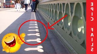 World's Funniest Engineering Fails!!