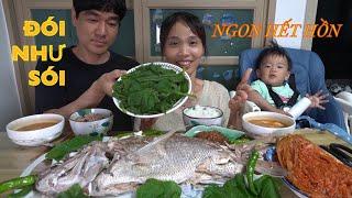 |TẬP 563| CƠM ĐẬU TƯƠNG GÓI LÁ BÍ CHẤM CÁ KHỔNG LỒ SIZE CỤ!!PUMPKIN LEAF SOYBEAN PASTE FISH EATING!