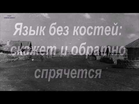 Татарская мудрость: татарские поговорки и пословицы, а также высказывания татарского народа.