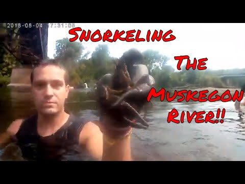 Snorkeling the Muskegon River