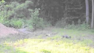 Brushless Clod pounder