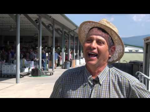 Shenandoah Valley Produce Auction