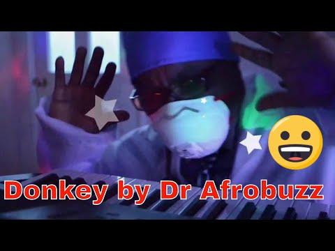 Dr Afrobuzz - DonKeY (Afrobeats)