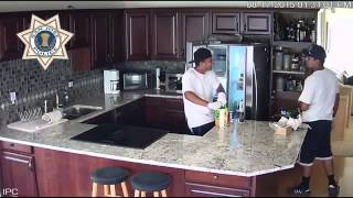 Burglars raid refrigerator