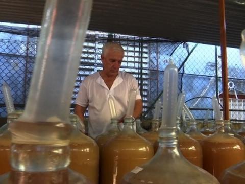 Cuban Fruit Winemaker's Key Ingredient: Condoms