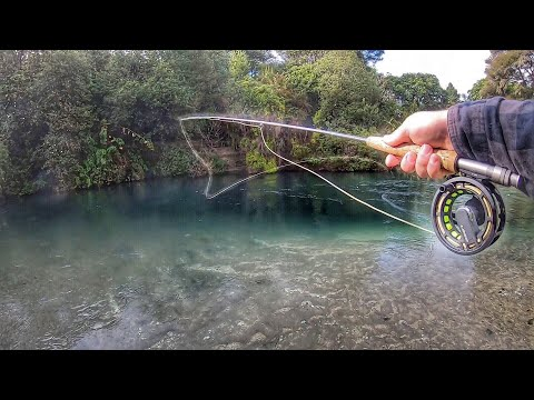 Ultra Clear NZ Rivers. Fishing Gear I Use!