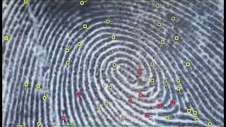 Галилео. Криминалистика 3. Биология и ДНК