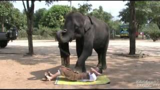 Exotic massage.mp4