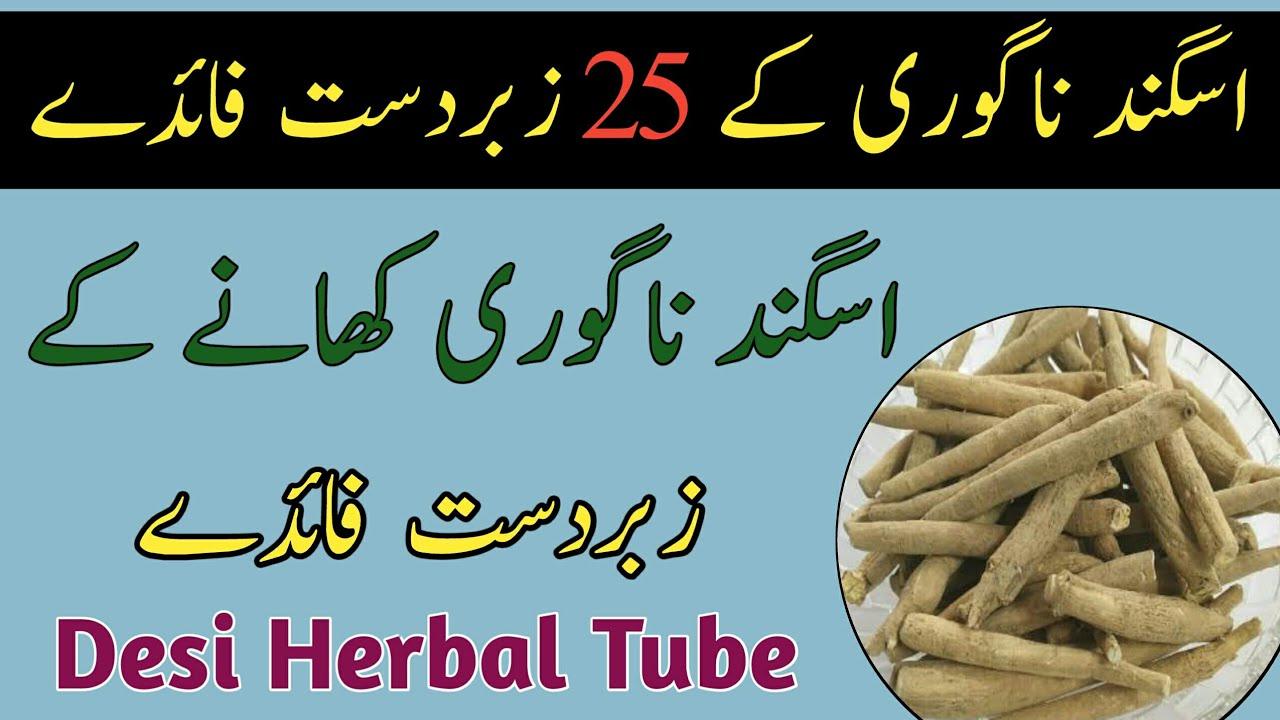 Download Ashwagandha Benefits In Urdu