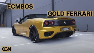 ECMBOS GOLD FERARRI SHOWCASE
