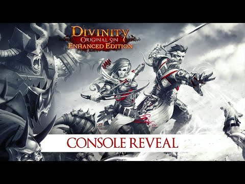 Divinity: Original Sin Is One of the Best Co-op Games for
