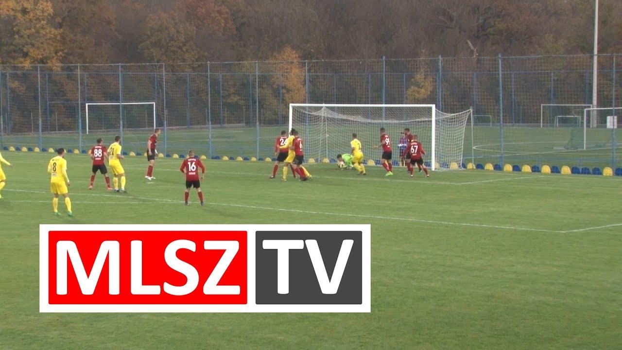 Aqvital FC Csákvár - Dorogi FC |2-2 (2-1) | Merkantil Bank Liga NB II.| 16. forduló |